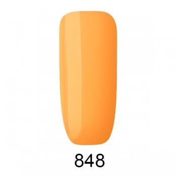 848-special-edition-4578
