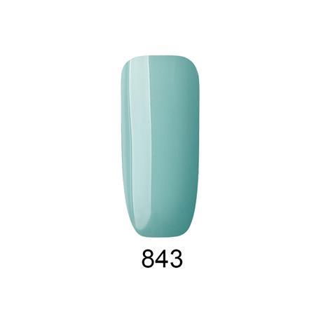 843-special-edition-4566